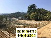 杭州西湖竹籬笆pvc護欄室外竹籬笆庭源頭廠家(中聞資訊)