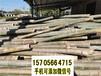 泉州金门县竹篱笆pvc护栏庭院装饰隔断款式多样化,欢迎下单(中闻资讯)
