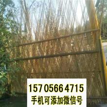 新乡获嘉竹篱笆绿化护栏绿化电力图片
