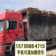 武汉硚口竹篱笆木栅栏仿竹节护栏pvc护栏厂家直销图片