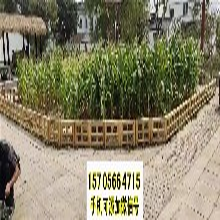 大学专区竹篱笆花园栅栏竹栅栏围栏塑钢护栏百度知道图片
