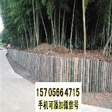 临武竹篱笆伸缩竹拉网户外花园围栏塑钢护栏百度图片图片