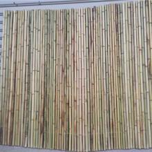 德城区竹篱笆竹围栏美丽乡村护栏竹子护栏价格欢迎图片