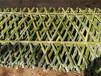 闽侯竹篱笆竹篱笆围栏伸缩围栏竹片塑钢护栏百度更多