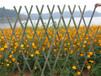 長安鎮竹籬笆竹笆碳化竹柵欄竹子護欄全國供應