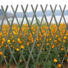 芦淞区竹篱笆碳化竹户外花园围栏塑钢护栏免费定做图片