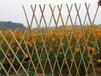 马尾区竹篱笆室内围栏PVC护栏塑钢护栏大自然的搬运工