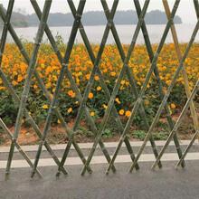 竹篱笆竹篱笆栅栏围栏塑料篱笆竹护栏竹栅栏欢迎来电图片