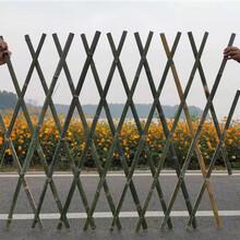 南昌东湖竹篱笆篱笆栅栏伸缩围栏竹片pvc护栏欢迎前来咨询图片