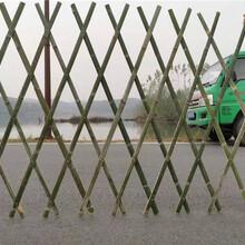 竹篱笆竹篱笆园优游平台1.0娱乐注册竹篱笆定制草坪护栏竹护栏竹栅栏大量现货图片