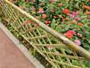 鼓楼区竹篱笆绿化护栏防腐小竹篱笆塑钢护栏价格优惠