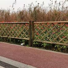 泰州高港区竹篱笆碳化竹护栏竹篱笆户外花园围栏pvc护栏2020年厂家供应图片