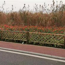 永顺竹篱笆围墙护栏竹篱笆园艺竹篱笆定制塑钢护栏现货销售图片