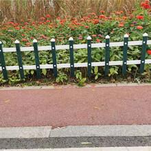 竹篱笆篱笆网栅栏白色塑料栅栏竹护栏竹栅栏价格定制定做图片