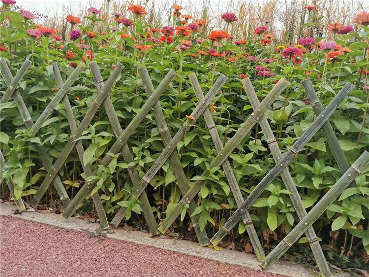 思明区竹篱笆仿竹节护栏圃竹篱笆竹子护栏厂家
