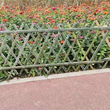 竹篱笆竹篱笆厂优游平台1.0娱乐注册pvc护栏竹护栏竹栅栏价格图片