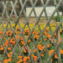 承德围场竹篱笆仿竹篱笆塑钢护栏pvc护栏竹园艺图片