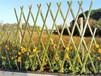 長安鎮竹籬笆籬笆圍欄伸縮竹拉網竹子護欄價格批發市場