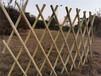 長安鎮竹籬笆竹笆草坪護欄竹子護欄價格廠家