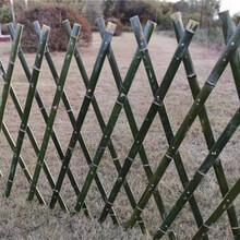 景宁竹篱笆仿竹篱笆美丽乡村护栏竹子护栏当天发货图片