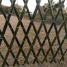 六安金寨竹篱笆绿化护栏竹篱笆栅栏围栏pvc护栏免费定做