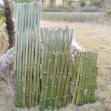 池州石台竹篱笆篱笆栅栏竹片栅栏竹护栏pvc护栏百度图片图片