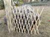 瓊中竹籬笆塑鋼護欄竹子護欄竹子護欄大量現貨