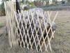 竹篱笆户外花园围栏柳篱笆竹护栏竹栅栏详情咨询