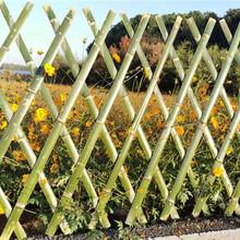 吉州区竹篱笆竹围栏插地围栏竹子护栏价格优惠图片