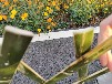 竹篱笆塑钢围栏彩钢围挡竹护栏竹栅栏大量现货