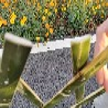 咸宁咸安区竹篱笆木护栏碳化防腐木pvc护栏欢迎前来咨询
