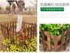 荆门京山竹篱笆竹篱笆天桥区锌钢护栏竹子护栏竹篱笆
