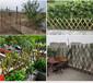 三明竹护栏竹片桩柳州柳城花园围栏竹栅栏