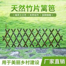 湖北黄石大冶竹护栏圃竹篱笆柳河围栏花园竹栅栏图片