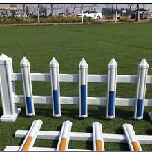 上饶竹护栏PVC护栏赣东森游戏主管大余塑料小围栏竹栅栏图片
