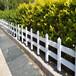 建阳市竹护栏绿化护栏广西港口碳化竹栅栏仿竹篱笆绿化护栏