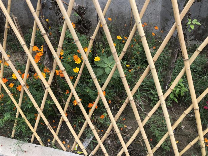 北关区 仿竹护栏优游平台1.0娱乐注册园水泥栏杆六安金寨栅栏户外竹节围栏