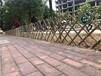 公安竹籬笆竹籬笆護欄邯鄲雞澤防腐小竹籬笆竹子護欄竹籬笆護欄