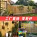 沙市竹護欄防腐竹籬笆青海格爾木竹子隔斷仿竹籬笆防腐竹籬笆