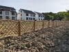 梅列竹护栏塑钢护栏四川广汉竹子隔断仿竹篱笆塑钢护栏