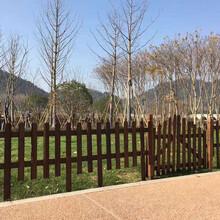 張家口橋西區竹籬笆竹子籬笆蘇州常熟碳化防腐木竹子護欄竹子籬笆圖片