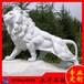 新鄉石獅子永升石材專業加工新鄉石獅子