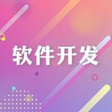 南京軟件開發_源碼開發_量身定制圖片