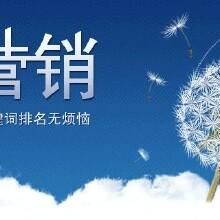 南京網絡推廣公司_按效果收費_先做后付費圖片