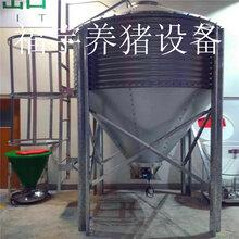 福宇畜牧机械猪场自动供料系统料线镀锌板料塔饲喂设备