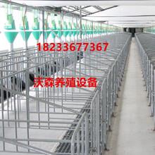 养猪设备母猪定位栏限位栏母猪产床猪产床定位栏2.16米