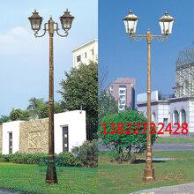 庭院灯景观灯翻砂铸铝中式庭院灯3米3.5米行道灯路灯定做厂家图片
