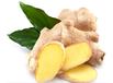 生姜提取物价格,生姜提取液,姜辣素用途,药食同源产品代加工