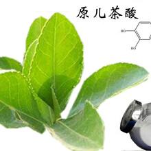 原儿茶酸价格价格,原儿茶酸介绍,原儿茶酸生产流程,原儿茶酸行情走势图片