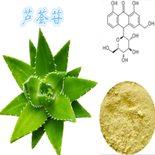 芦荟苷价格,芦荟苷介绍,芦荟苷生产厂家,芦荟苷纯植提取图片